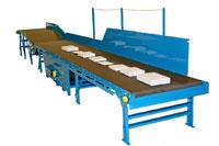 Hytrol Parcel Belt Conveyors Model Hytrol FXG