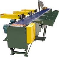 Hytrol Vipersort - Right Angle Sortation Conveyor